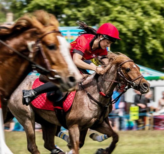 Game fair photos 2016 - Francis rozier15 web