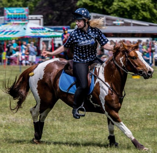 Game fair photos 2016 - Francis rozier16 web